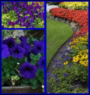 Good BFGS _ Boise Flower U0026 Garden Show 2017