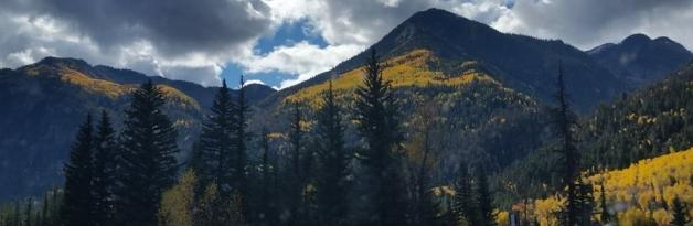 Aspen Colors Explode Near McCall Real Estate