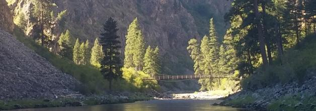 Suspension Pack Bridge Salmon River