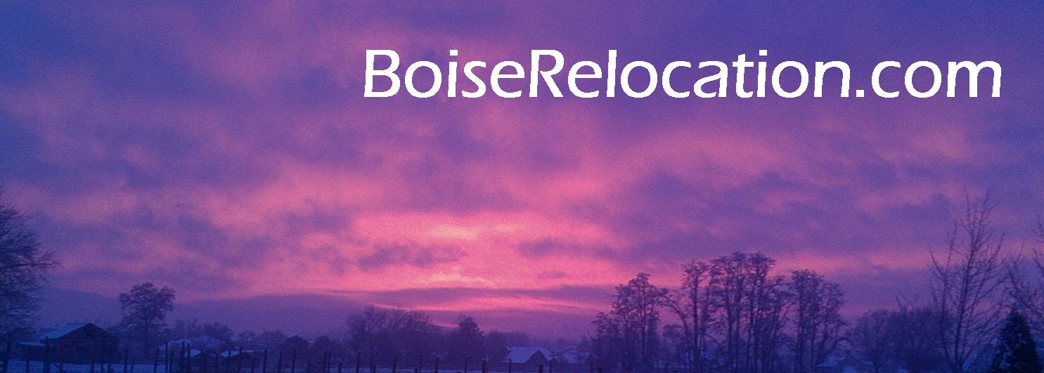 Image result for boiserelocation images